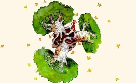 baobabs-y-el-principito